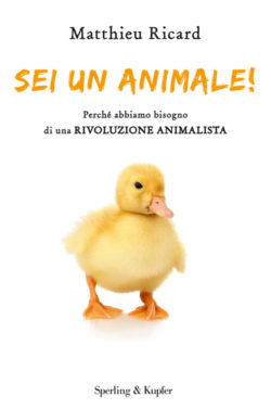 Sei un animale!