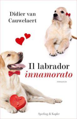 Il labrador innamorato