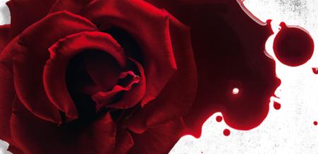 I ricordi di un'altra: il nuovo thriller di Louise Jensen
